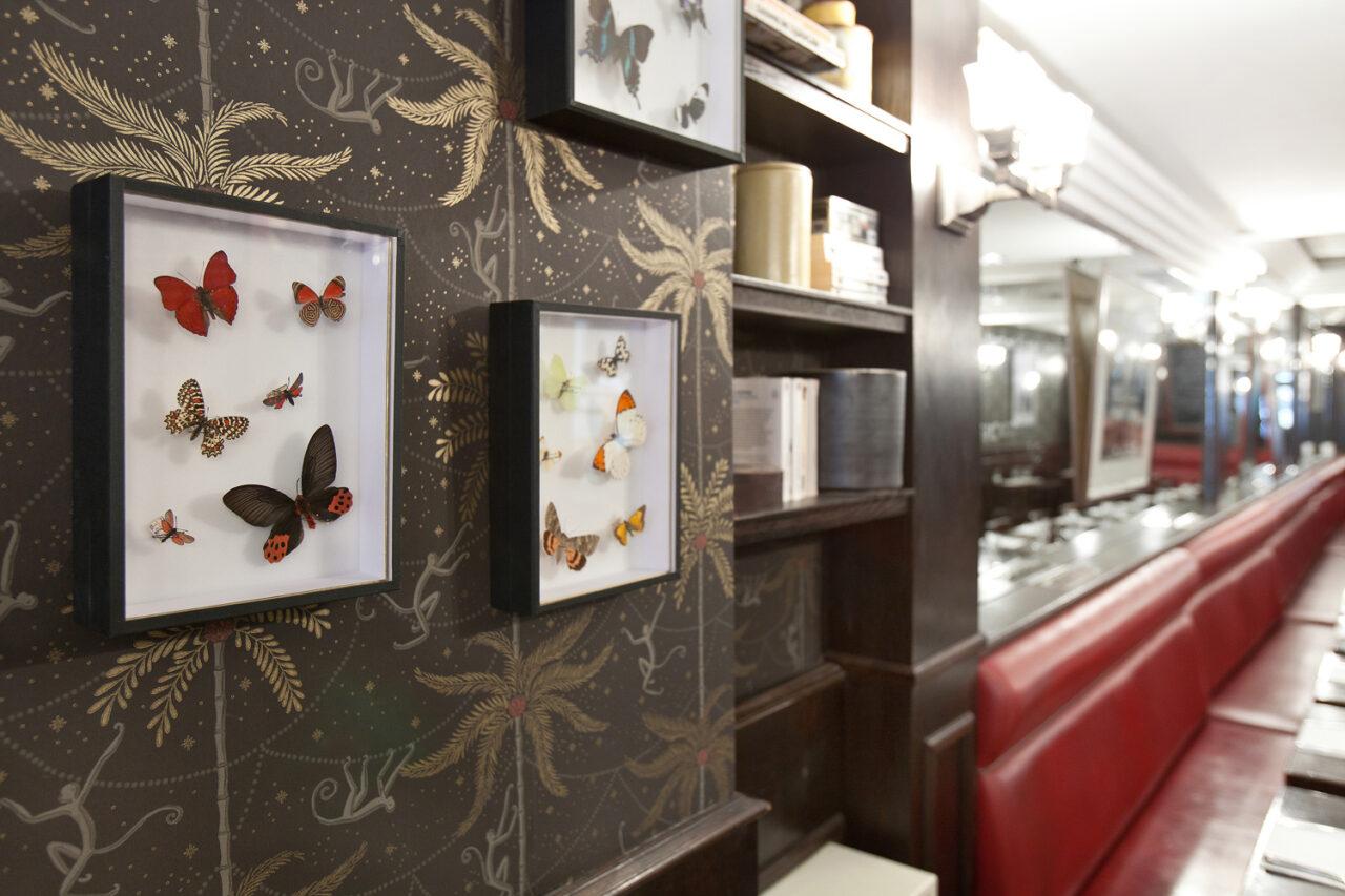 papier peint décoratif et étagère sur mesure